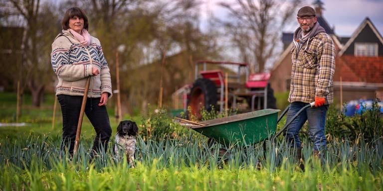 Friese Voedselbeweging brengt vraag en aanbod lokaal voedsel bij elkaar